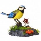 Vogel Stiftehalter mit Sound in blau-gelb