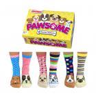 Pawsome Hunde Oddsocks Socken in 37-42 im 6er Set