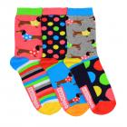 Dackel Oddsocks Socken in 37-42 im 3er Set