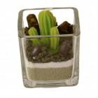 Stangen Kaktus im Glas Kerze