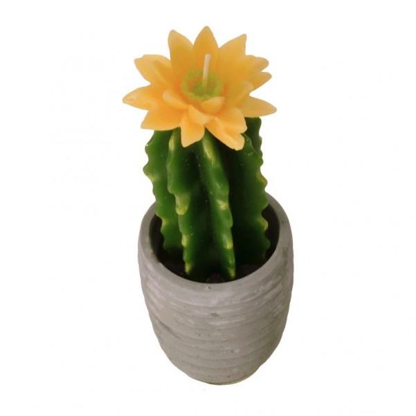 kaktus kerze mit gelber bl te der shop. Black Bedroom Furniture Sets. Home Design Ideas