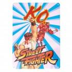 Street Fighter Ryu vs. M. Bison Metallschild