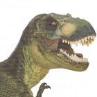 Ride with a T-Rex Autosticker