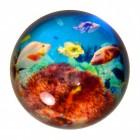 Unterwasserwelt Briefbeschwerer