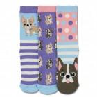 Oddsocks Hund Woof Socken in 30,5-38,5 im 3er Set