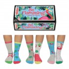 Be Flamazing Flamingo Oddsocks Socken in 30,5-38,5 im 6er Set