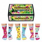 Verrückte Socken Oddsocks Tropicool für Frauen im 6er Set