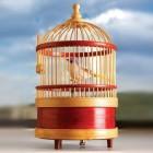Vogel im Käfig Aufziehfigur