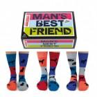 Des Mannes bester Freund Hunde Socken in 39-46 im 6er Set